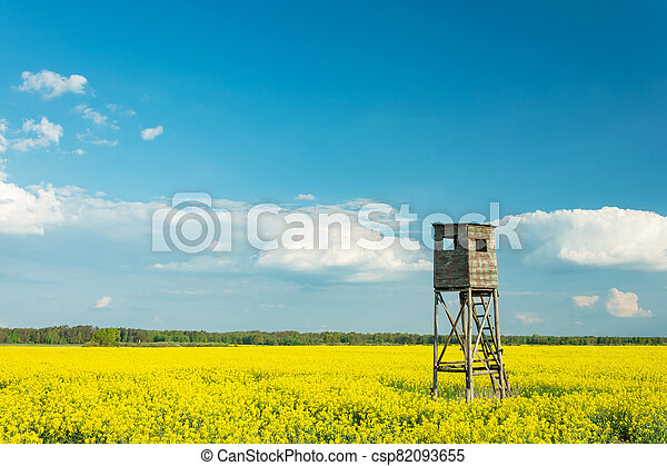 Hunting pulpit standing in a field of yellow rapeseed, white clouds on a blue sky - csp82093655
