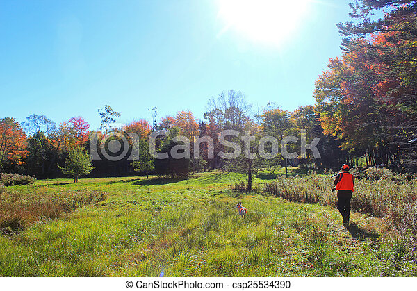 Hunting with a Dog in Field - csp25534390