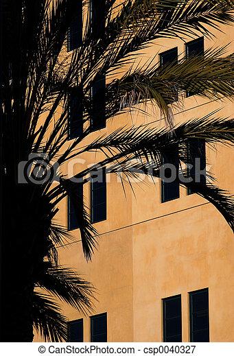 hus, palm trä - csp0040327