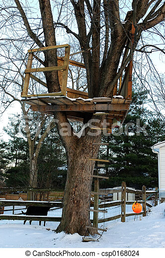 hus, träd vinter - csp0168024