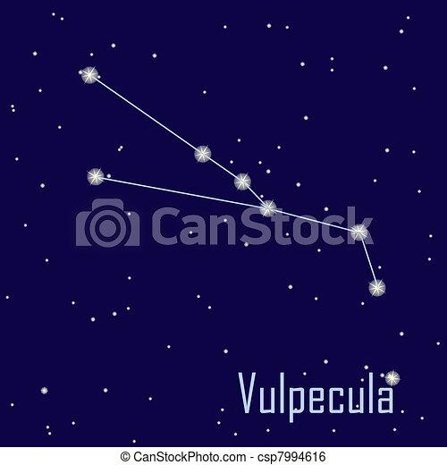 """"""", hvězda, sky., ilustrace, vulpecula"""", vektor, večer, souhvězdí - csp7994616"""