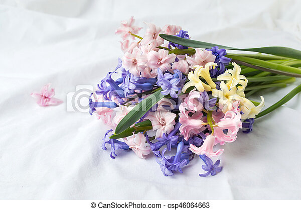 hyacinth flowers bouquet on white fabric hyacinth flowers mixed