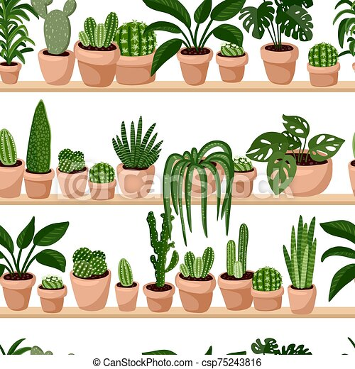 Hygge Potted Succulents Plants On Shelf Seamless Pattern Cozy