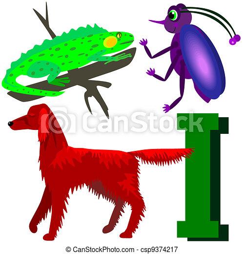 I insect, irish setter, iguana. Illustrations of animals that