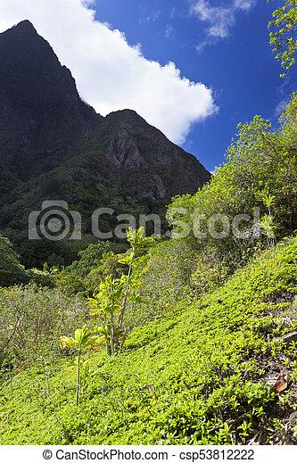 Iao Valley en Maui, Hawaii - csp53812222