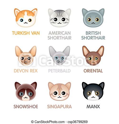 Dessin de chats kawaii - Dessin de chat kawaii ...