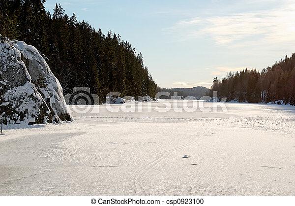 Ice-Covered Lake - csp0923100