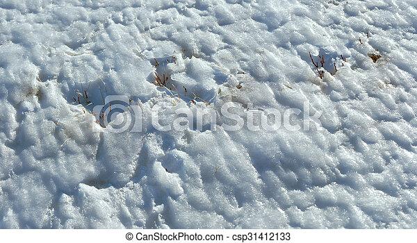 Ice surface texture - csp31412133