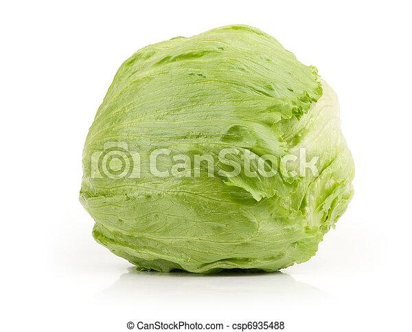 Iceberg Lettuce - csp6935488