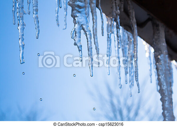 icicles glint in the sun - csp15623016