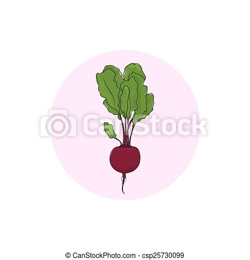 Icon beet root vegetable - csp25730099