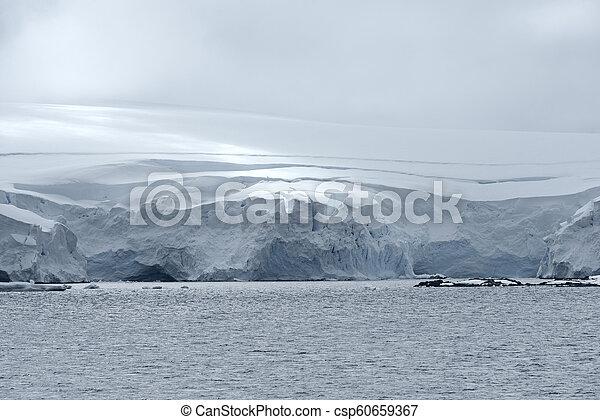 Icy landscape at Neko Harbor, Andvord Bay, Antarctic Peninsula - csp60659367