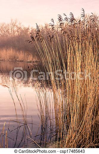 Idyllic lake - csp17485643