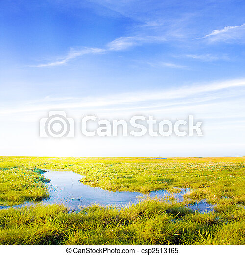 Idyllic lawn with Stream and sunlight - csp2513165
