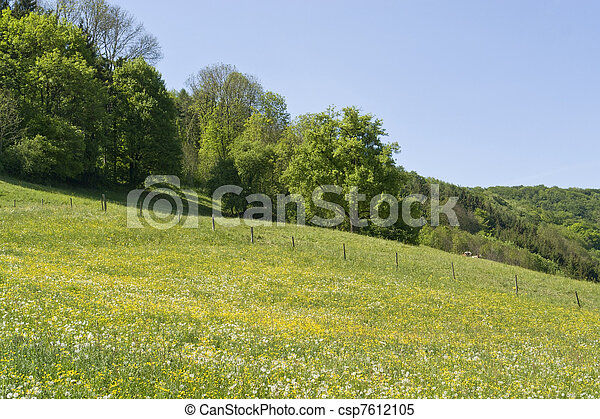 idyllic spring scenery in Hohenlohe - csp7612105