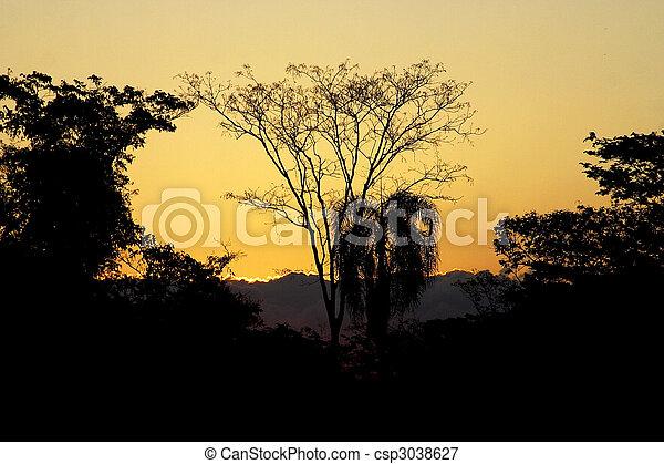 Iguazu Falls - csp3038627