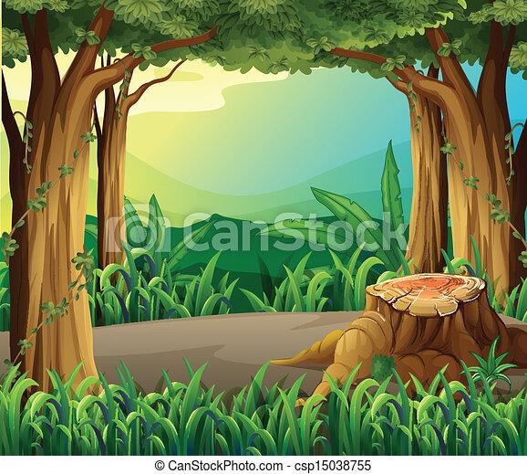 illégal, enregistrement, forêt - csp15038755