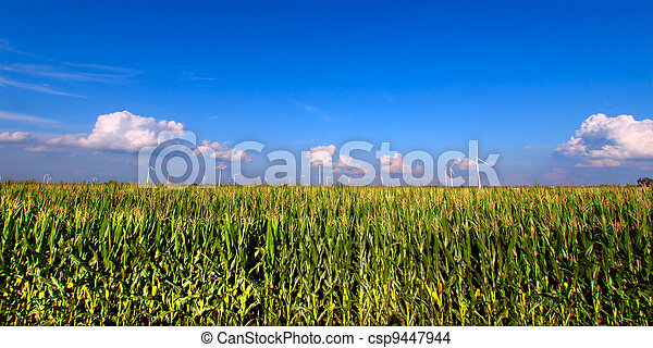 Illinois Agricultural Land - csp9447944
