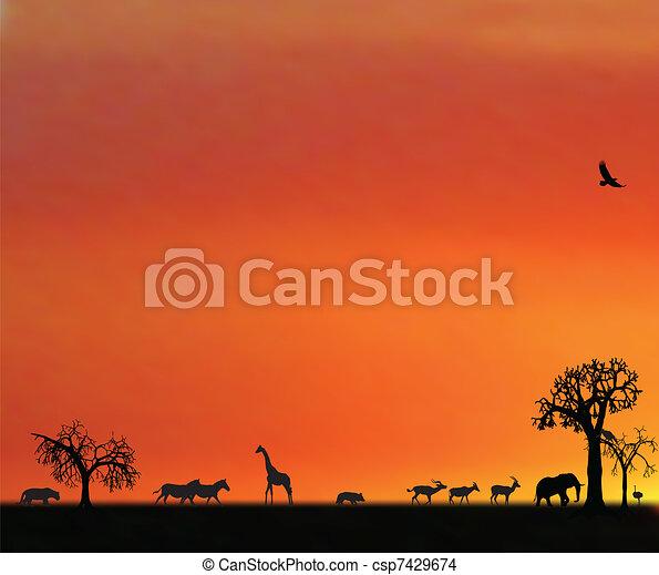 illustraion of animals in sunset in africa - csp7429674