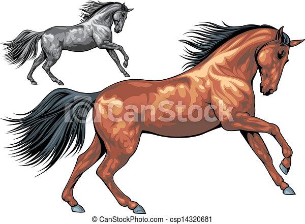 illustrated horse - csp14320681