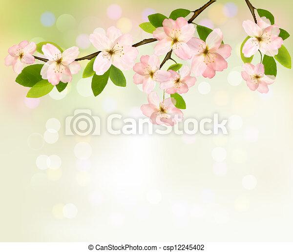 illustration., 春, 開くこと, 木, flowers., ベクトル, 背景, ブランチ - csp12245402