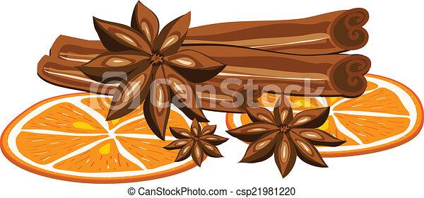 Illustration Anis Arrière Plan Cannelle Vecteur Orange Blanc