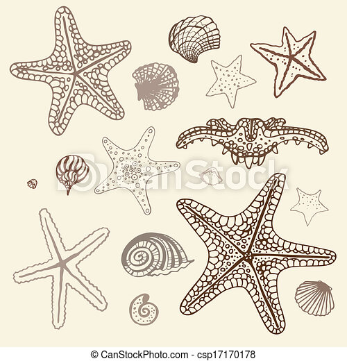 illustration., etoile mer, set., main, vecteur, mer, dessiné - csp17170178