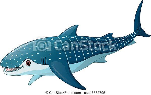 Illustration Of Cartoon Whaleshark Vector Illustration Of Cartoon