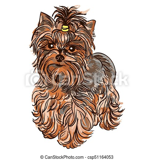 Illustration Of Dog Breed Yorkshire Terrier Colorful Vector