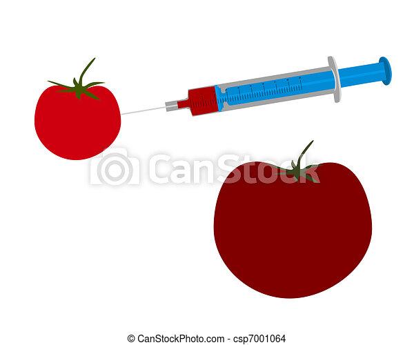 illustration of genetic engineering of a tomato. Black Bedroom Furniture Sets. Home Design Ideas