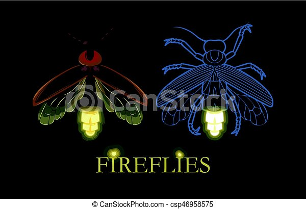 Illustration of glowing firefly - csp46958575
