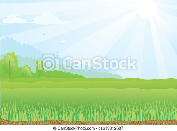 Illustration of green field with sunshine rays and blue sky. - csp13312607