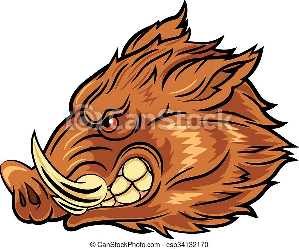 Illustration of head wild boar - csp34132170
