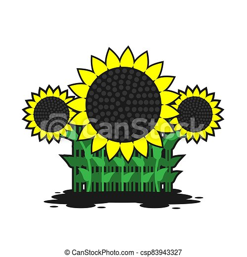 illustration of sunflowers stems with leaves on a white isolated background. Vector image - csp83943327