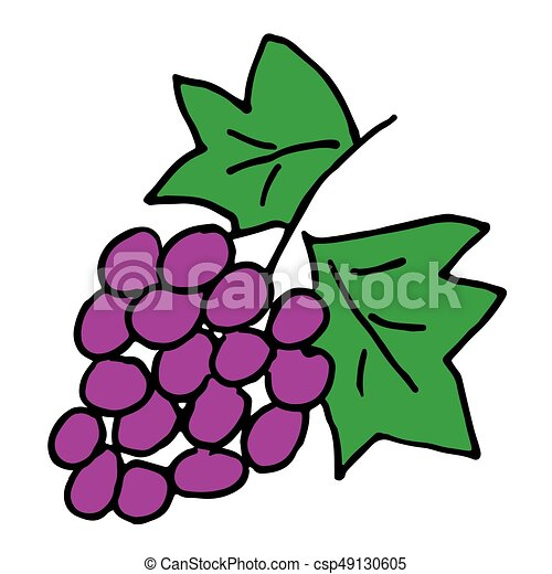 illustration of vector hand drawn colorful grapes vector clipart rh canstockphoto com grape vector png graph vector functions