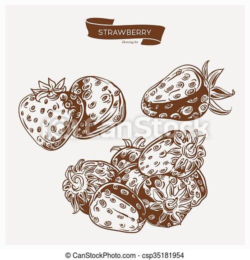 Illustration set of drawing strawberry. Hand draw illustration set for design. - csp35181954