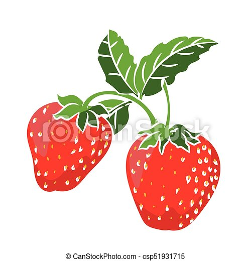 illustration strawberry vector illustration illustration rh canstockphoto com strawberry vector free download strawberry vector art