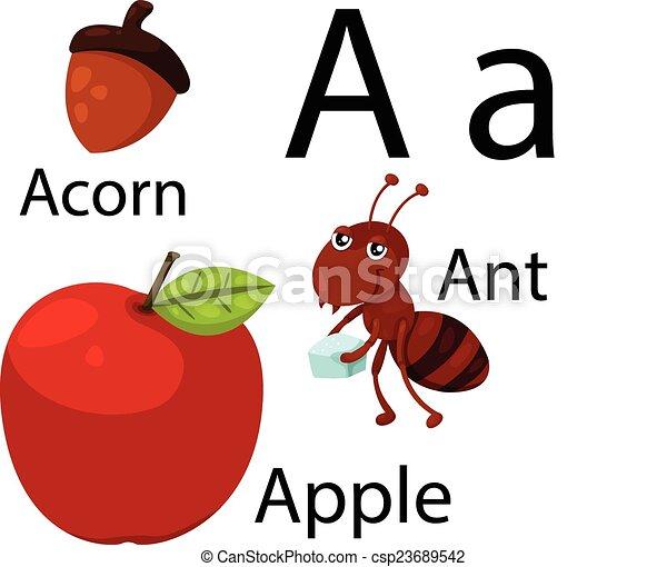 Illustrator of A alphabet - csp23689542