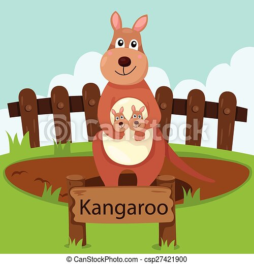 Illustrator of kangaroo in the zoo - csp27421900