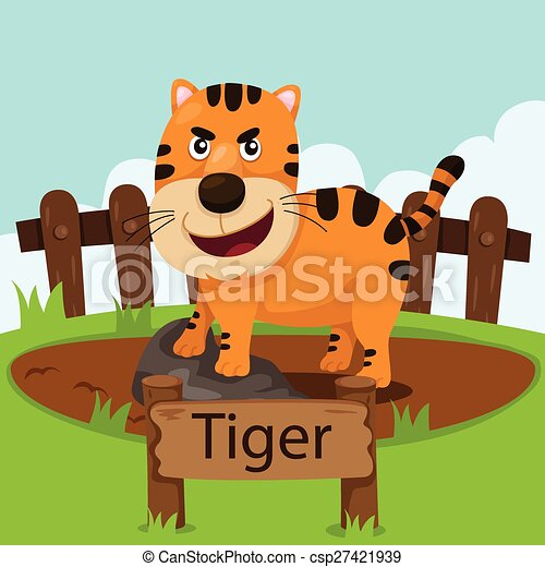 Illustrator of tiger in the zoo - csp27421939