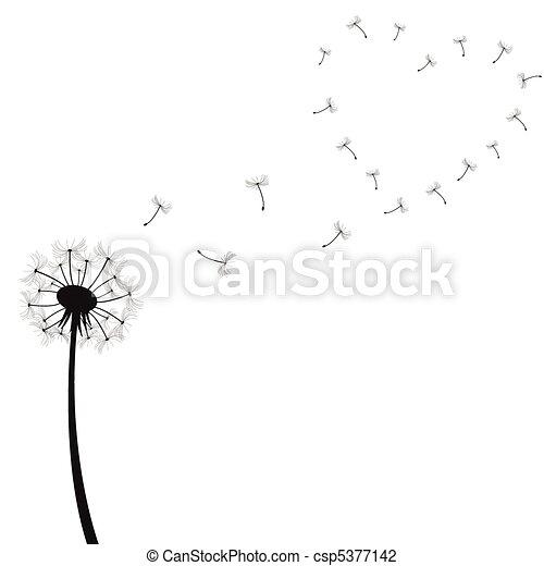 ilustração, dandelion - csp5377142