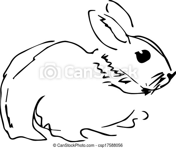 image of a rabbit with long ears - csp17588056