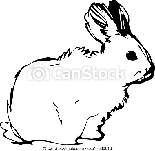 image of a rabbit with long ears - csp17588016