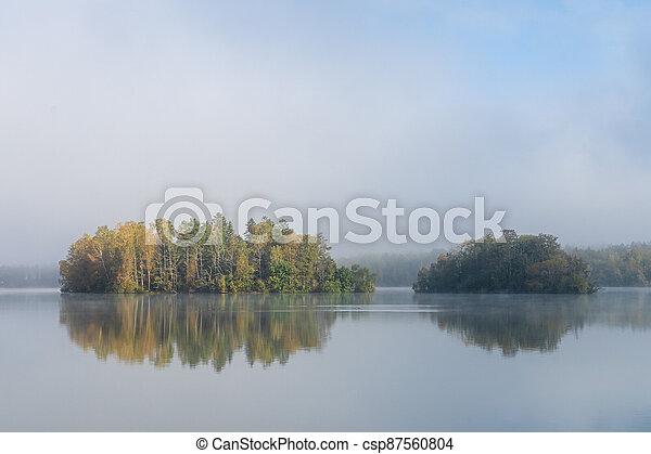 Image of tree island on the foggy lake at morning - csp87560804