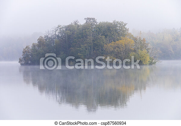 Image of tree island on the foggy lake at morning - csp87560934