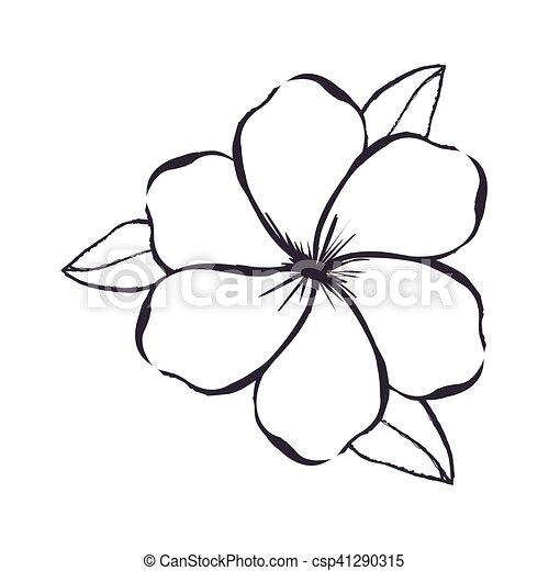 Imagem Flor Delicado Desenho Icone Flor Imagem Ilustracao