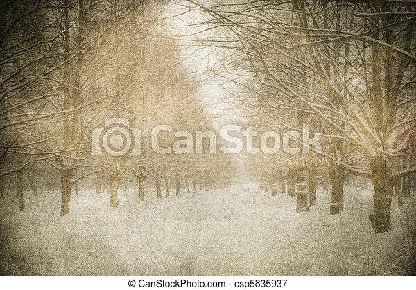 La imagen grunge del paisaje invernal - csp5835937