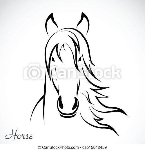 Imágenes de un caballo - csp15842459