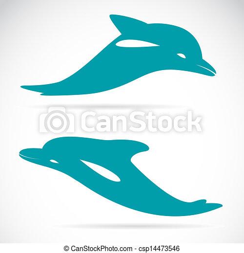 Imágenes de un delfín - csp14473546