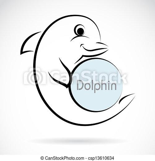 Imágenes de un delfín - csp13610634
